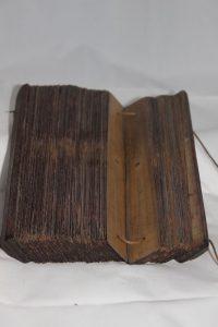Buch auf Palmblatt -15